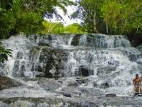 Spirit Vine Ayahuasca Retreats