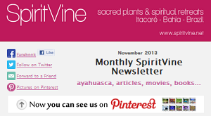 SpiritVine Newsletter
