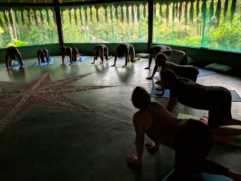 Ayahuasca Retreats with Yoga