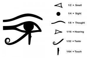 senses hieroglyphs