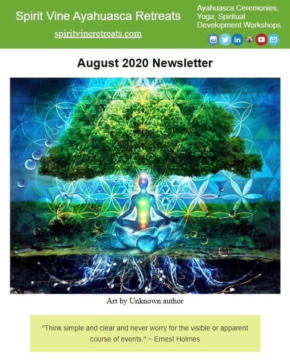 Spirit vine newsletter august 2020